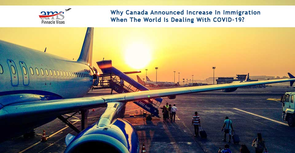 Why Canada announced increase in immigration when the world is dealing with COVID-19?